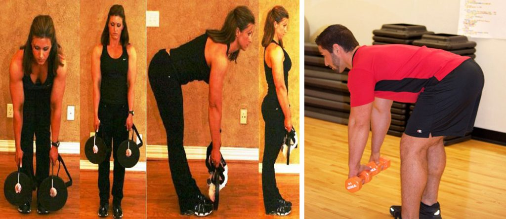 lower back exercises dead lifts