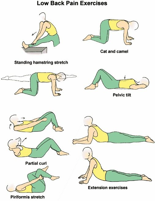 lower backpain exercises