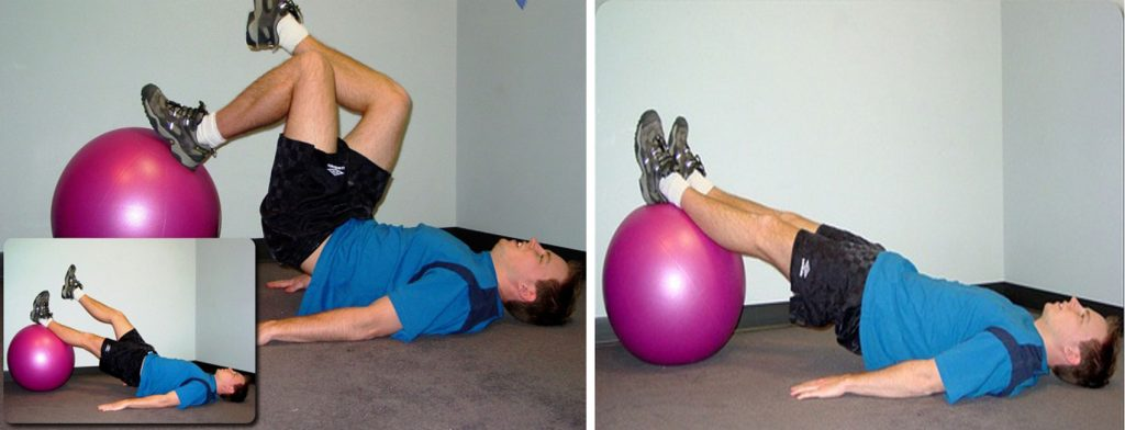 muscle gains hamstring exercises
