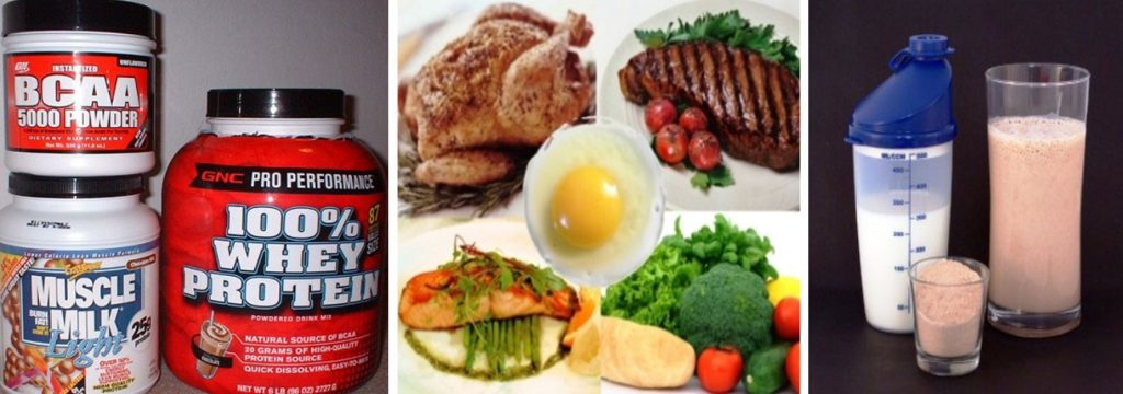 muscle building protein